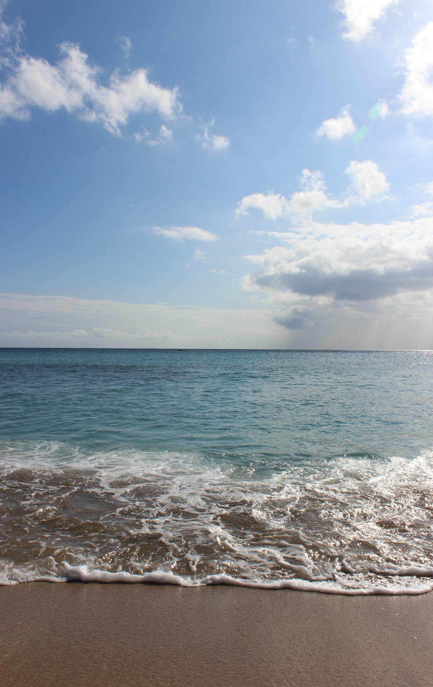 海滩春天风景手机壁纸