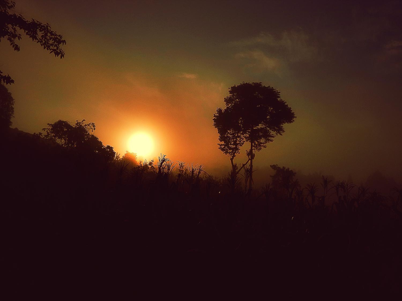夏季摄影,夏夜星空.