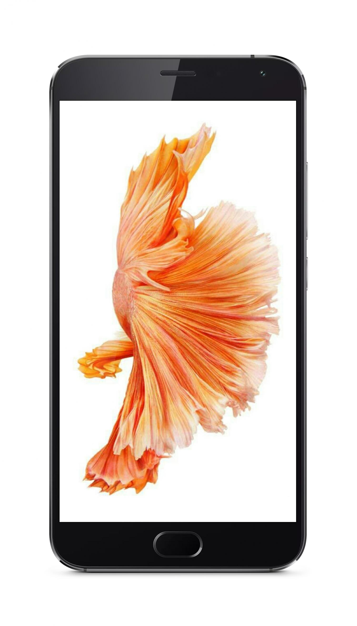 「資源組」蘋果iphone6s全新金魚壁紙